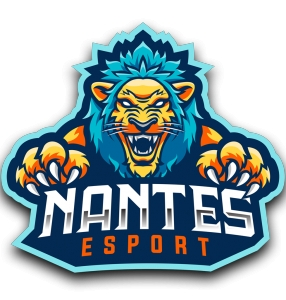 Photo of the company NANTES ESPORT who recruits in the video game and the Esport