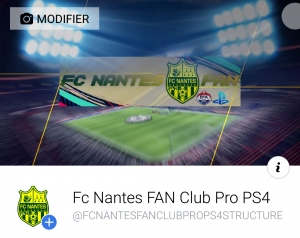 Photo of the company FC NANTES FAN who recruits in the video game and the Esport