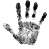 Logo de la structure Digital & Human